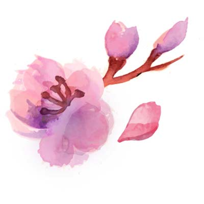 Frauenärztin Balingen - Dr. Harasztosi - Logodetail Blume
